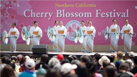 Northern California Cherry Blossom Festival001