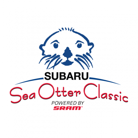 seaotter-001