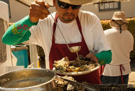 "Miguel Romero, of ""Aroma Concepcion,"" of San Jose, prepares Washington oysters at the 29th annual Pittsburg Seafood and Music Festival on Sunday September 8th, 2013 in Pittsburg, California. Photo/Victoria Sheridan"