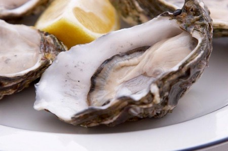 bigstock-Oysters-On-A-Plate-1032752-for-Narooma-Oyster-Festival