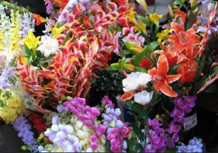 chinese-flower-fair