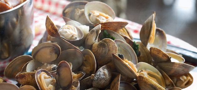 Santa Cruz Clam Chowder Cook-Off & Festival 巧達濃湯 PK 賽 (2/24-2/25)