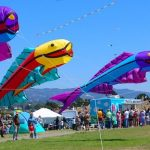 Berkeley Kite Festival 柏克萊風箏節 (7/29-7/30)