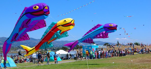 Berkeley Kite Festival 柏克莱风筝节 (7/29-7/30)