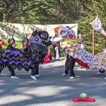 Lunar New Year Celebration at SF Zoo 新春遊園尋生肖迎金鼠!(2/1-2)